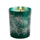 Mon Beau Sapin Candle by Maison Francis Kurkdjian