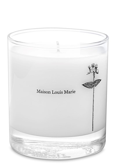 Antidris - Cassis Candle  Soy Blend Candle  by Maison Louis Marie
