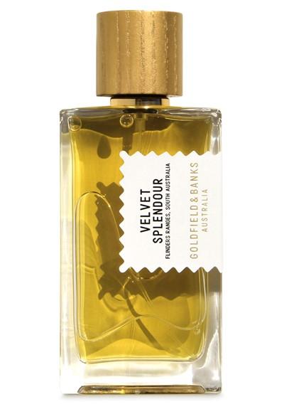 Velvet Splendour Perfume Concentrate  by Goldfield & Banks